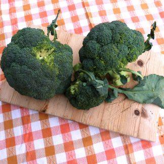 FRU Brócolo