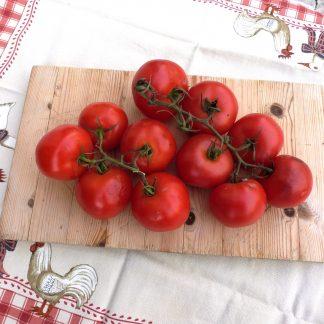 FRU Tomate em cacho