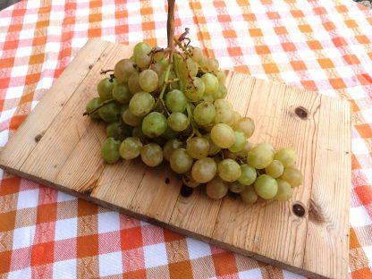 FRU Uvas Brancas